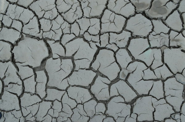 Grey Colored Cracked Mud Texture