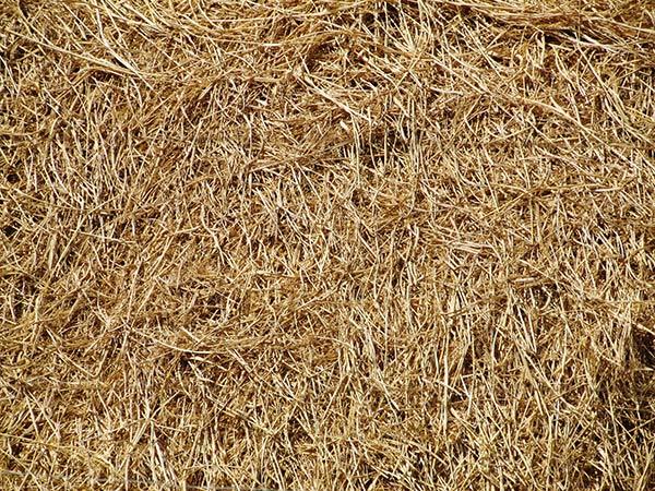 Hay Straw Bale Farm Texture