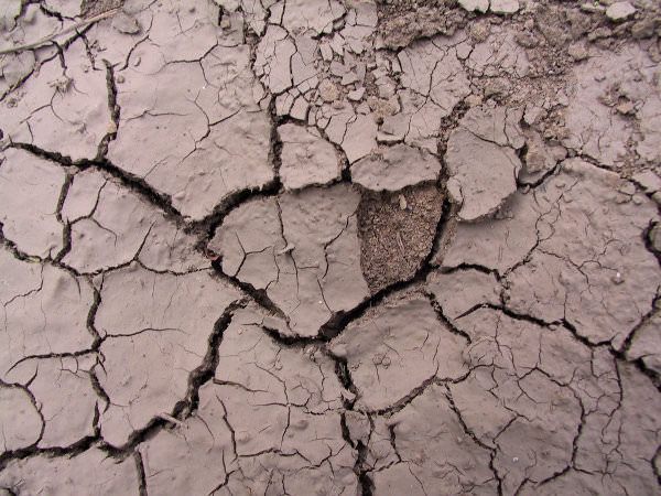 High Res Cracked Mud Texture for Photoshop