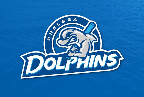 realistic dolphin logo design