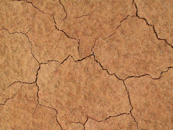 Soil Earth Mud Texture