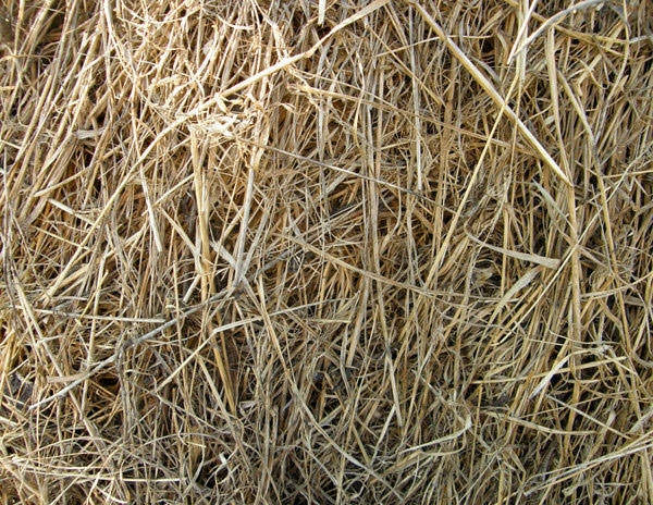 Straw-and-Hay-Texture