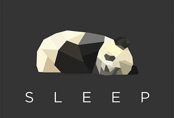 geometric-Panda-Logo-Design