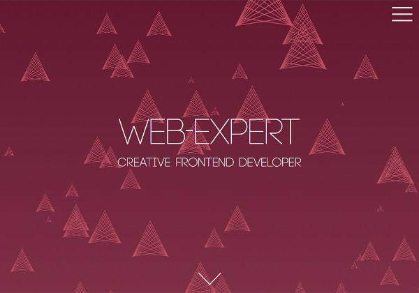 web-expert