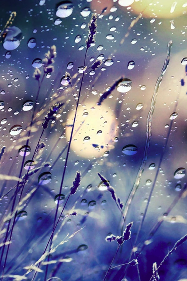 Abstract Rain iPhone Background For Free