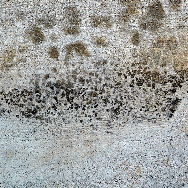 Amazing Free Concrete Grunge Texture For You
