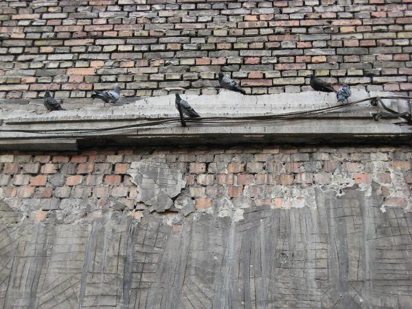 Amazing Free Grunge Wall Texture