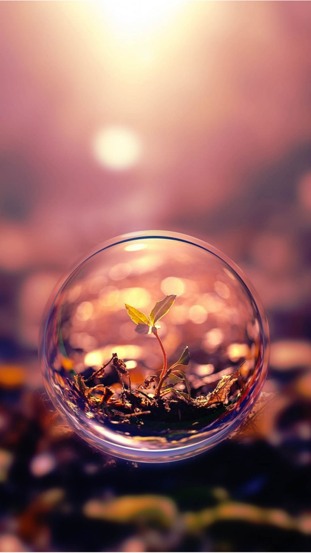 Beautiful Vintage Micro Photography Water Bubbled IPhone Wallpaper