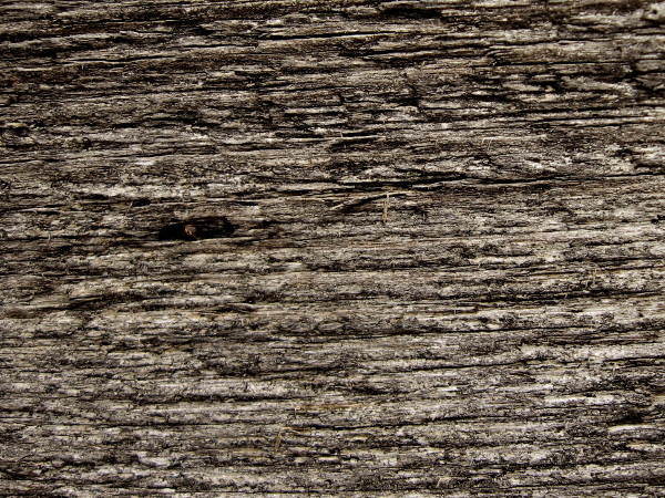 Download Free High Quality Wooden Texture