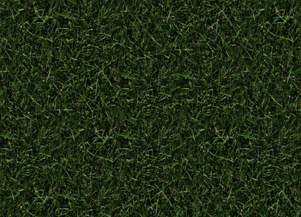 Download High Resolution Free Tileable Grass Texture