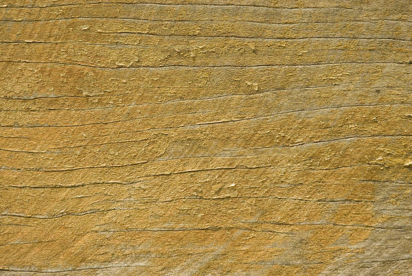 Frayed Wood Grain Texture