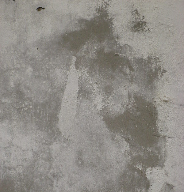 Free Grunge Wall Texture For You