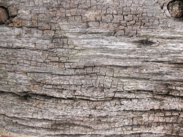 75 Free Old Wood Textures Freecreatives