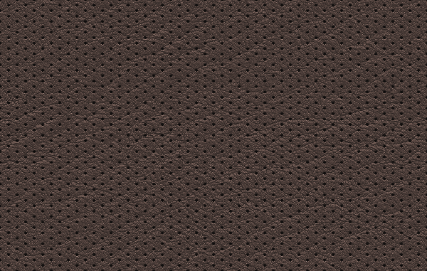 Free Perforated Leather Seamless Texture