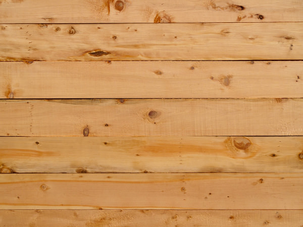 Free Pine Wood Texture