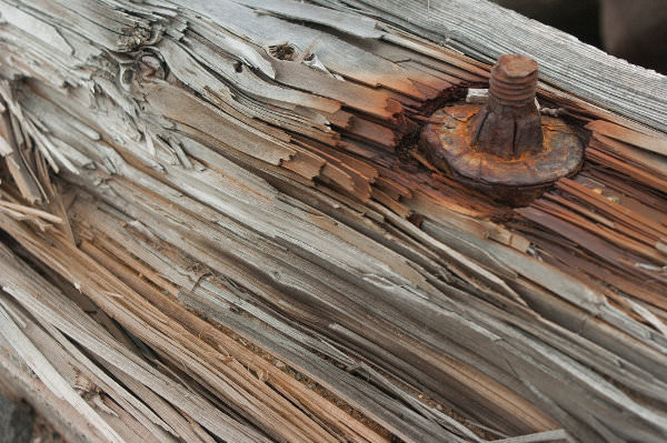 Free Rusted Wood Texture