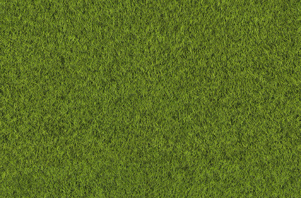 Free Tileable Grass Texture Download