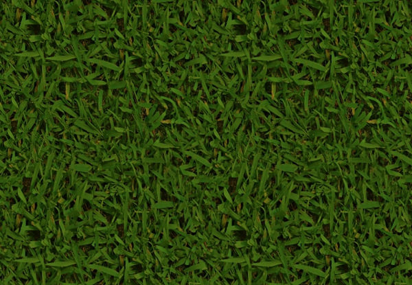 Free Tileable Grass Texture For Download