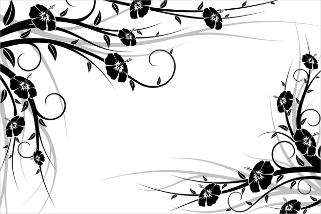 Isolated Black & White Floral Background