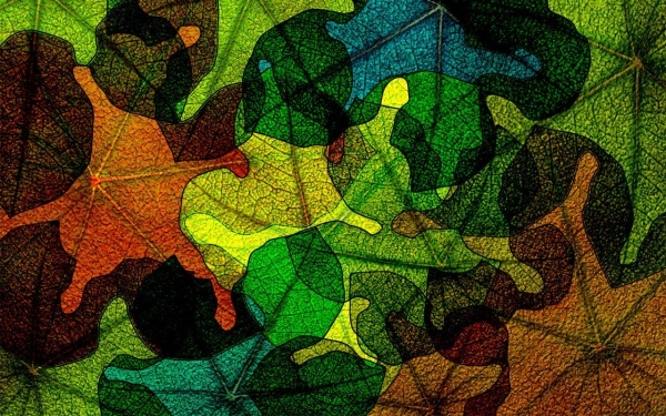 Multi Color Leaf pattern For You