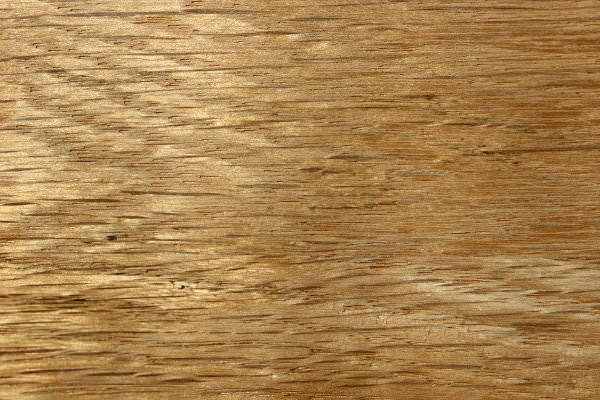 Oak Wood Grain Texture