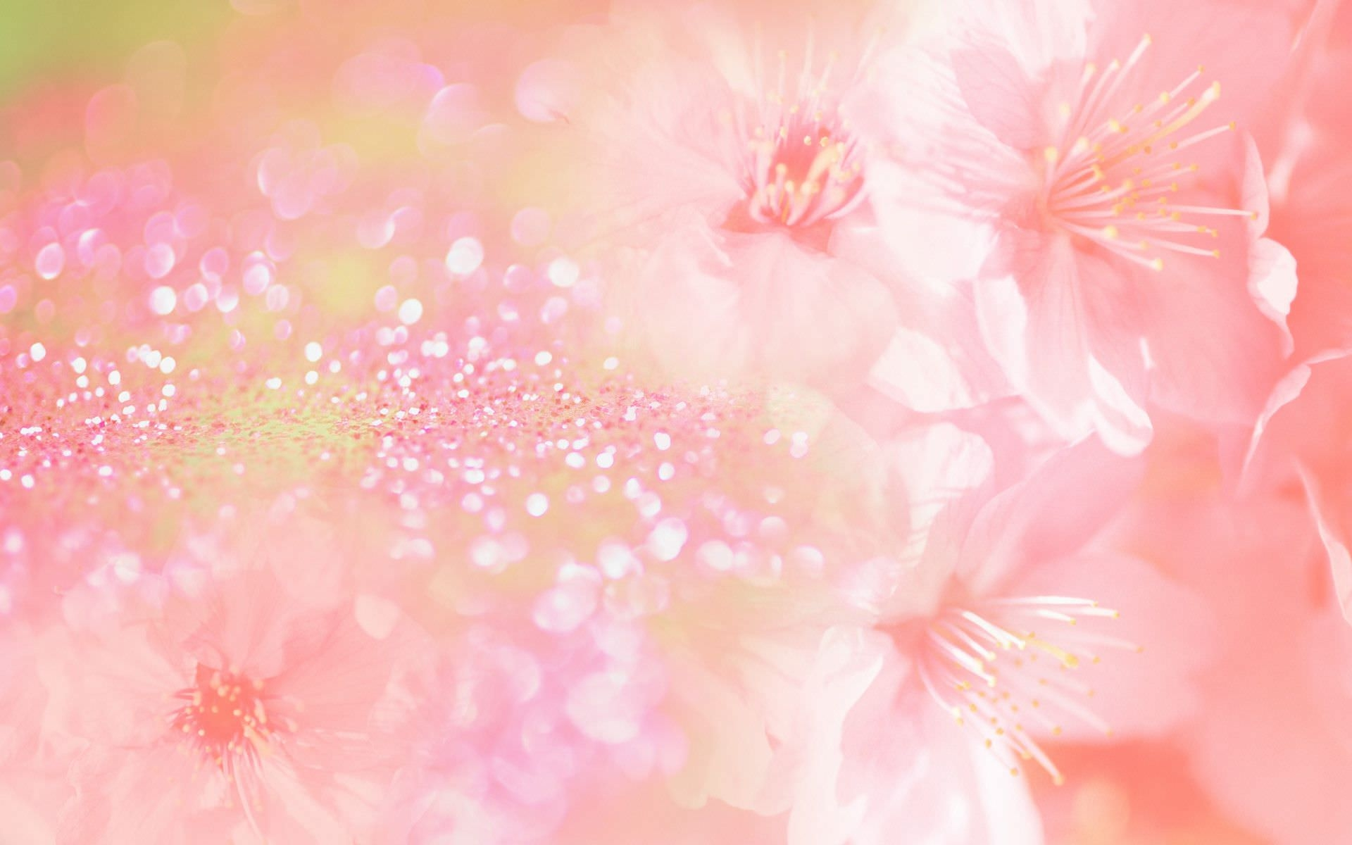Free 14 Pink Floral Wallpapers In Psd Vector Eps