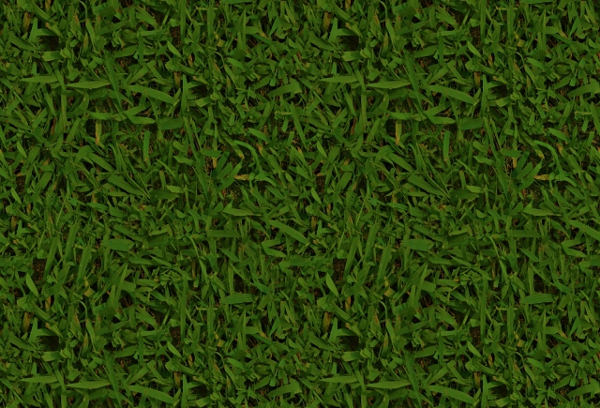 Seamless High Resolution Grass Texture