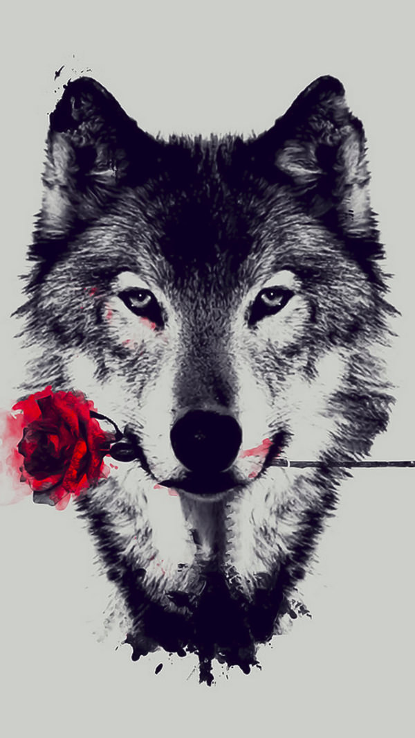 Wolf With Rose iPhone 5s Background