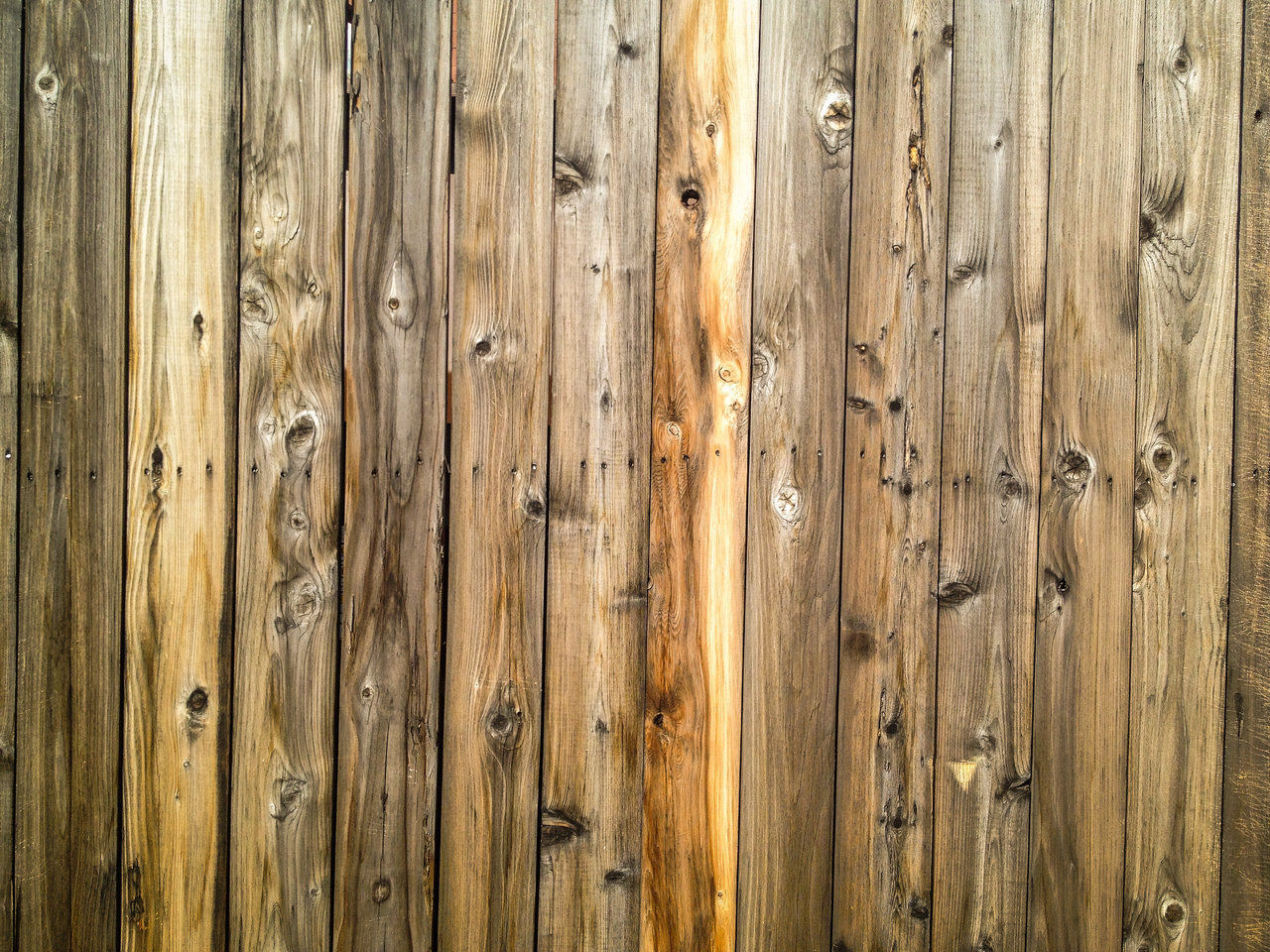 Amazing Hardwood Background For You