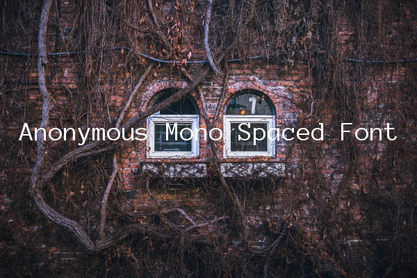 Anonymous Mono Spaced Font