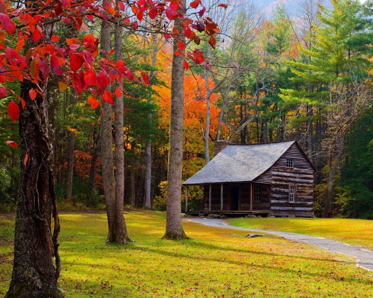 Autumn Forest House Wallpaper