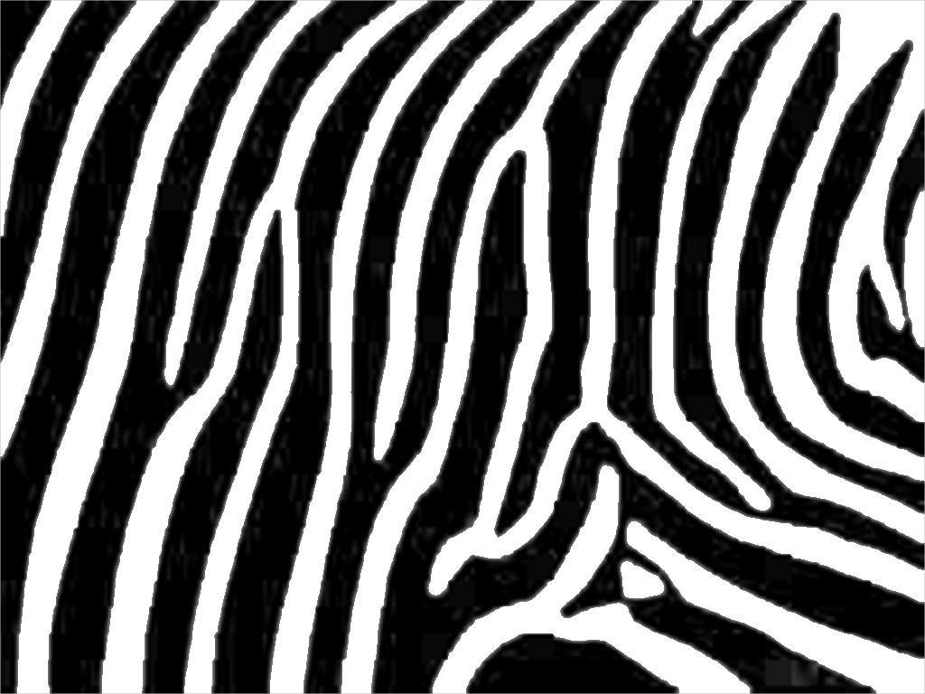 Awesome Zebra Pattern For Free