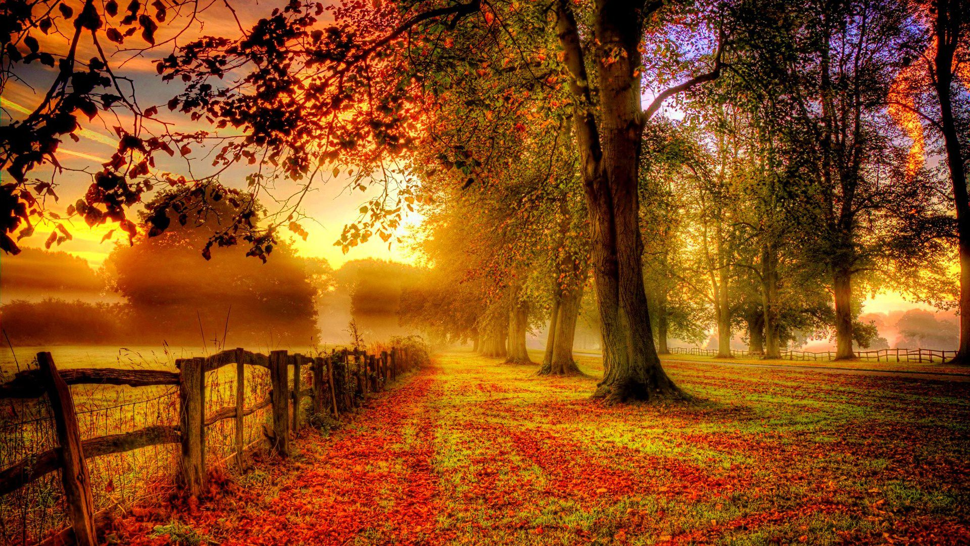 Beautiful Autumn Wallpaper For You