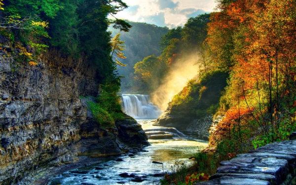 Beautiful Forest Waterfall Wallpaper