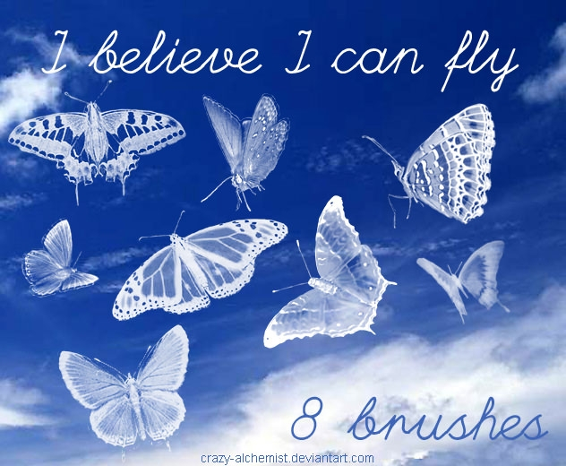 Best Butterfly Photoshop Brushes