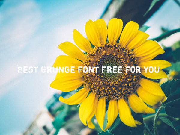 Best Grunge Font Free For You