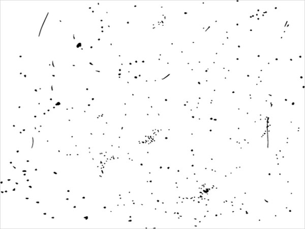 Black Speckle Vector Texture