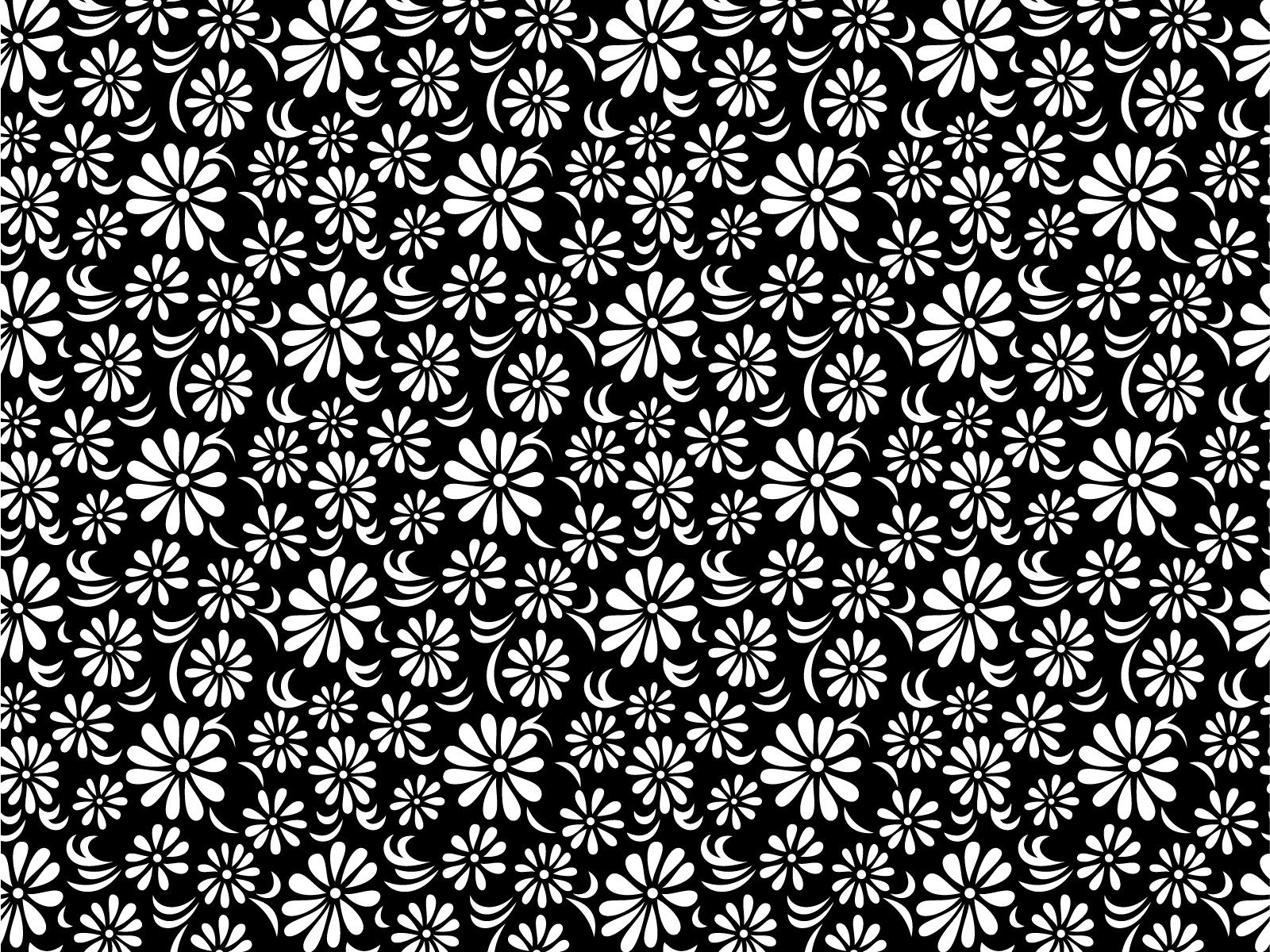 Black and White Floral Desktop Wallpaper