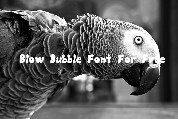 Blow Bubble Font For Free