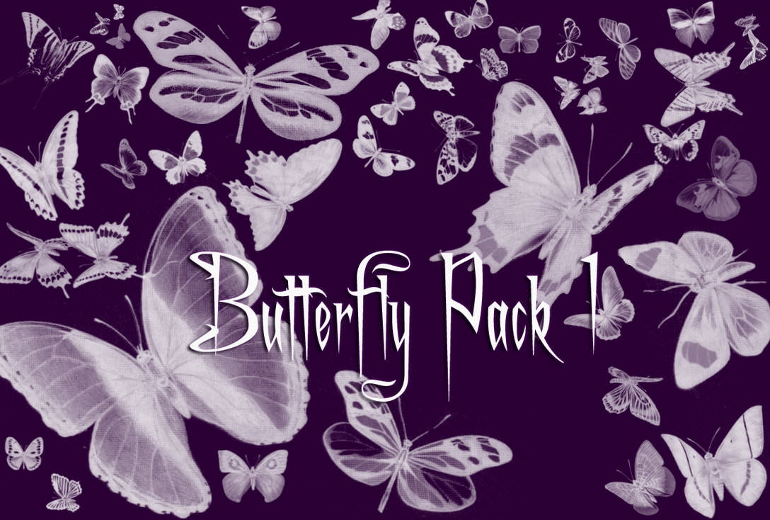 Butterfly Brushes Pack