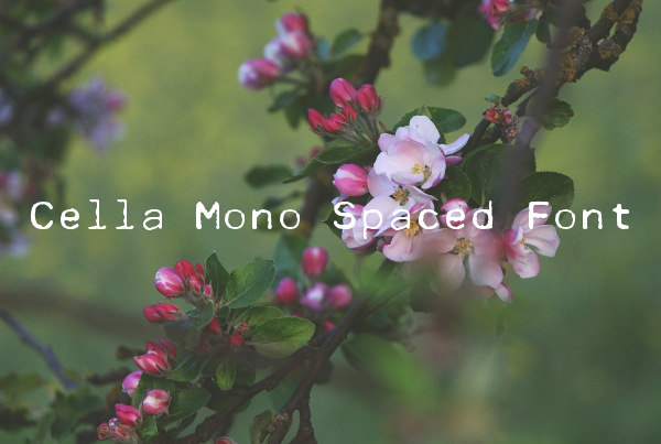 Cella Mono Spaced Font For Free