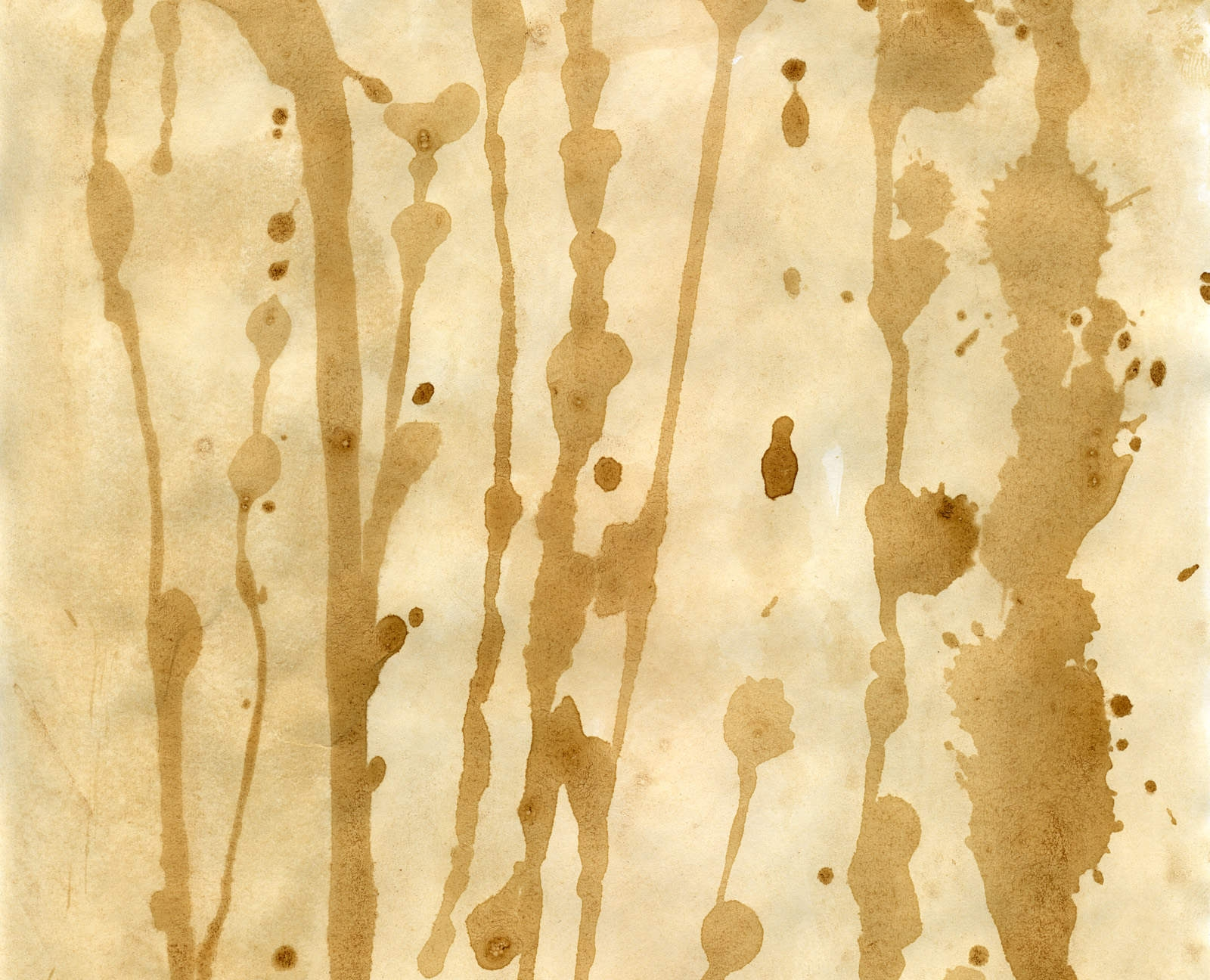 Coffee Stains Paper Texture