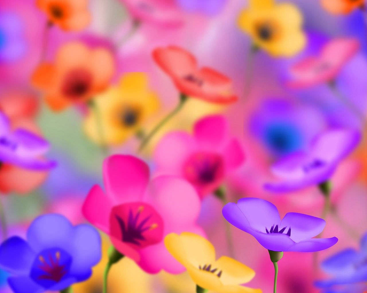 Cool Backgrounds of Flowers