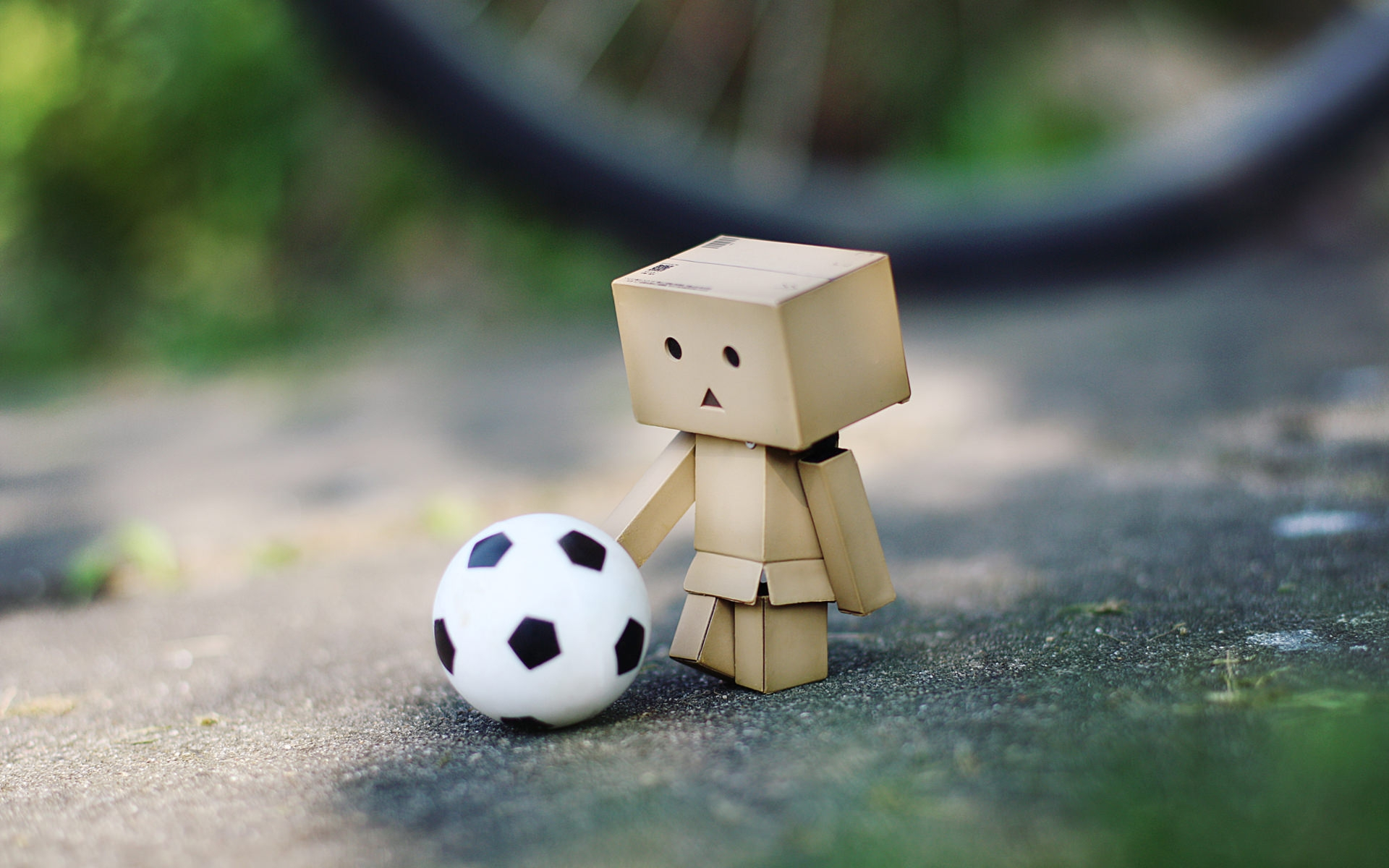 Danbo Soccer Background For Free