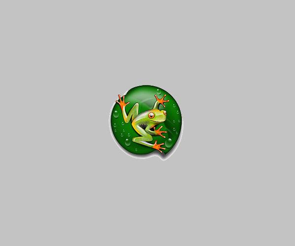 Download Designer Frog logo