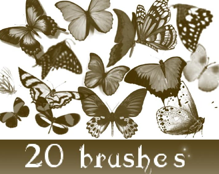 Download Photoshop Butterfly Brushes