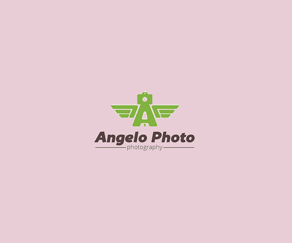 Download Wings Photography Logo