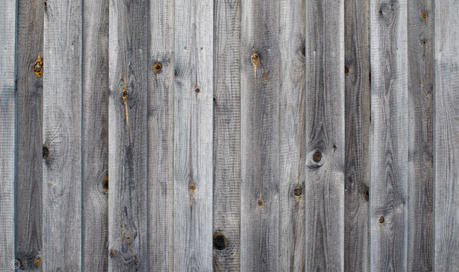Download Wood Planks Wall Raw Weathered Background in Grey Tone