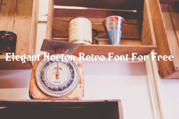 Elegant Norton Retro Font For Free