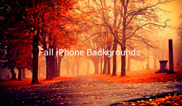 Fall iPhone Backgrounds
